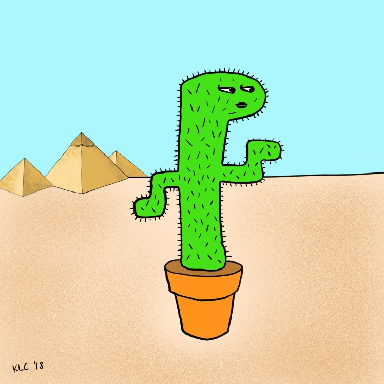 Cacti of the World 1